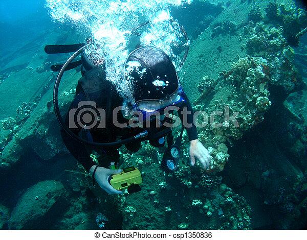buceando en un muelle hundido - csp1350836