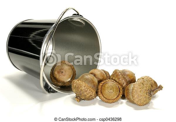 Bucket of Acorns - csp0436298