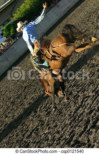 Bucking Bronco - csp0121540