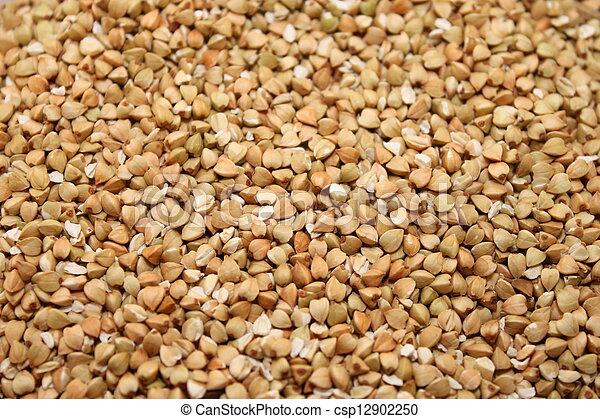 buckwheat groats - csp12902250