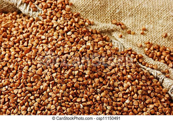 buckwheat groats - csp11150491