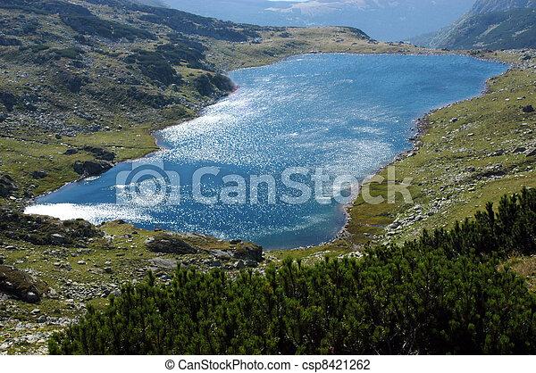 Bucura lake, Retezat National Park - csp8421262