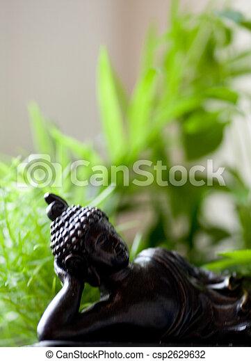 buddh - csp2629632
