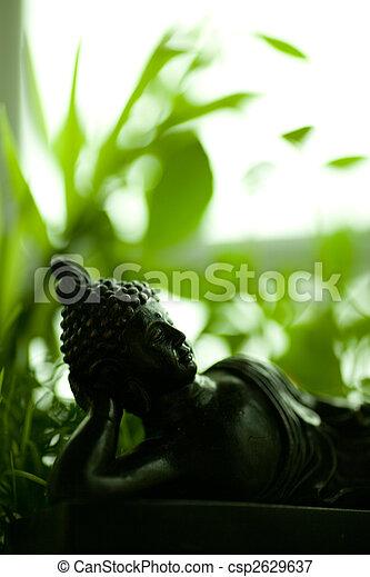 buddha - csp2629637