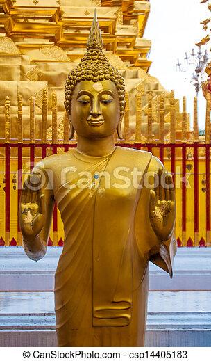 Buddha - csp14405183