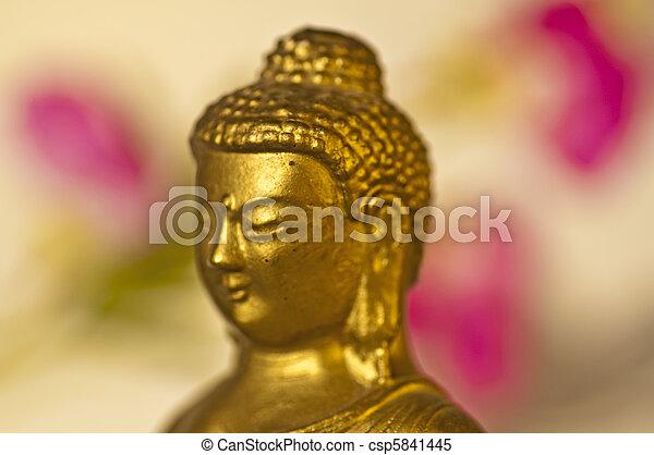 Buddha - csp5841445