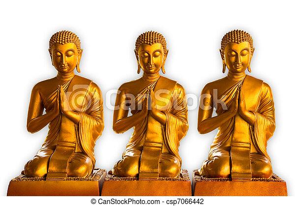 Buddha - csp7066442