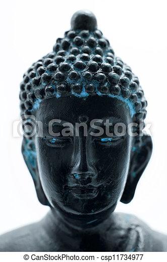 Buddha's portrait - csp11734977