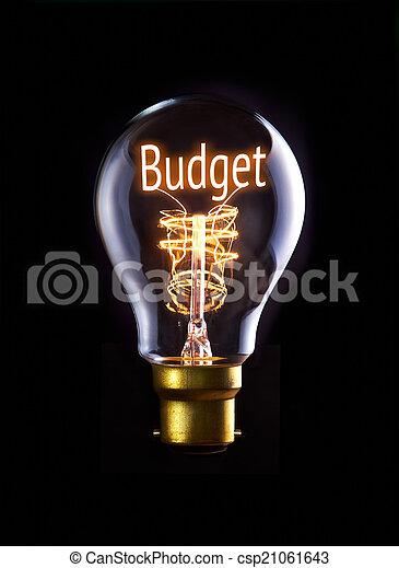 Budget Concept - csp21061643