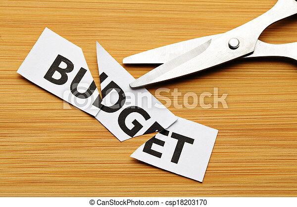 Budget cut - csp18203170