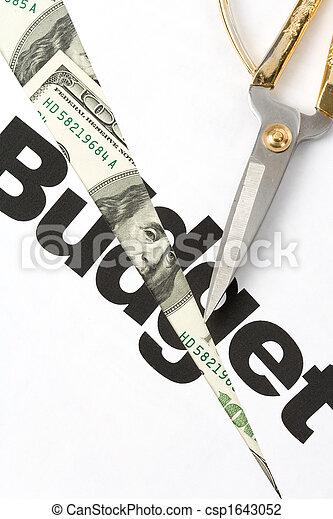 Budget Cut - csp1643052