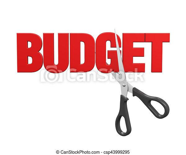 Budget Cuts Concept - csp43999295