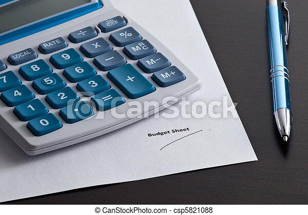 electronic budget sheet