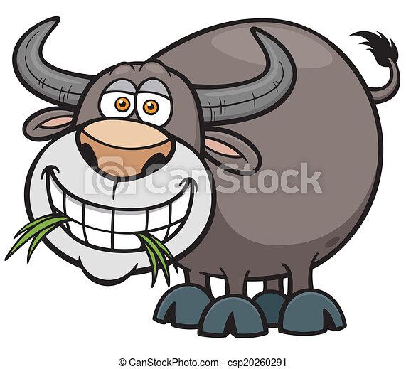 Buffalo - csp20260291