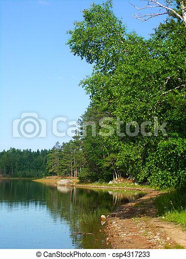 Buffalo Lake - northwoods Wisconsin - csp4317233