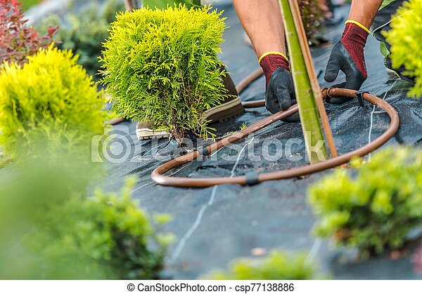 Building Irrigation System - csp77138886