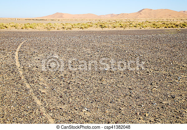 buisson, désert, fossile, vieux, rue - csp41382048