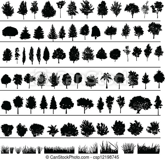 buissons, arbres, herbe - csp12198745