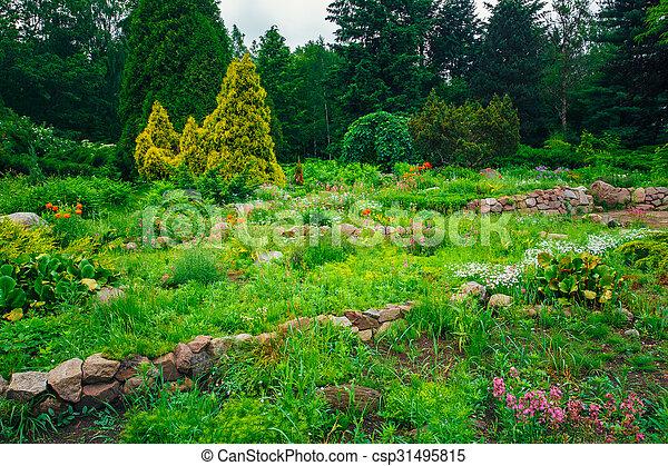 buissons, jardin fleur, arbres, lit, landscaping, vert, design.