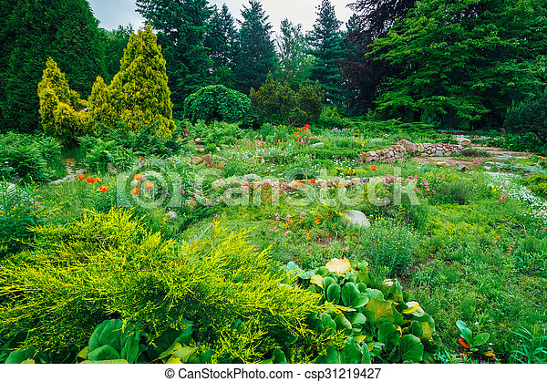 Buissons, jardin fleur, arbres, lit, landscaping, vert, design ...