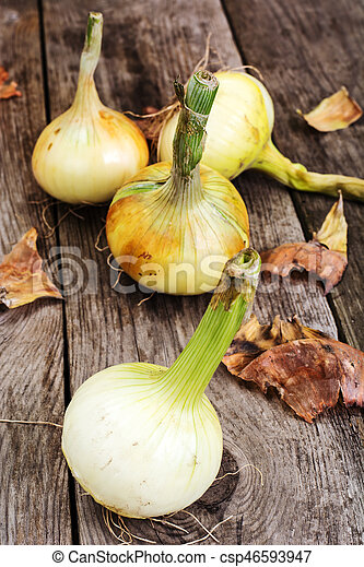 Bulbs of young onions - csp46593947