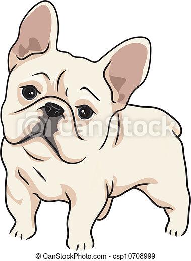 cute buldogue francês ilustração curioso caracterizando