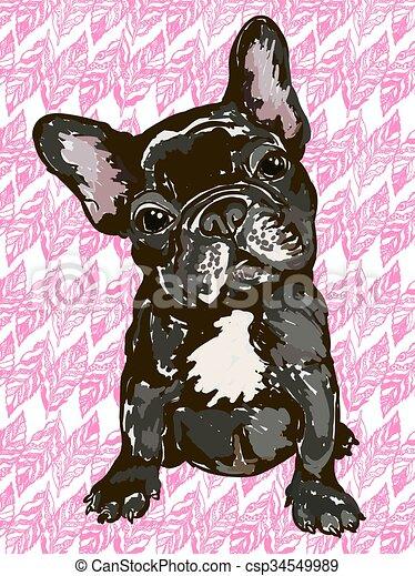 buldogue francês buldogue ilustração raça cão francês