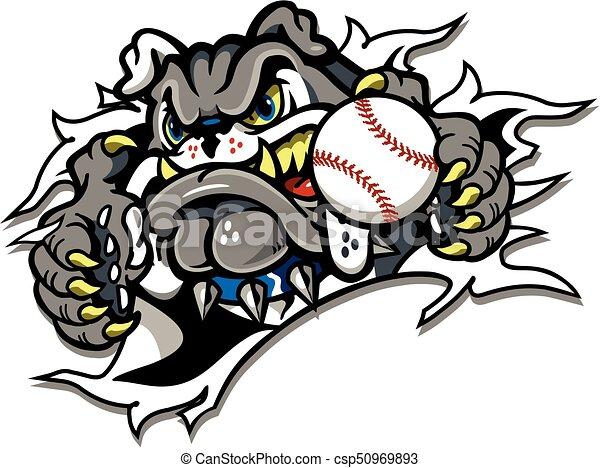 bulldog baseball - csp50969893