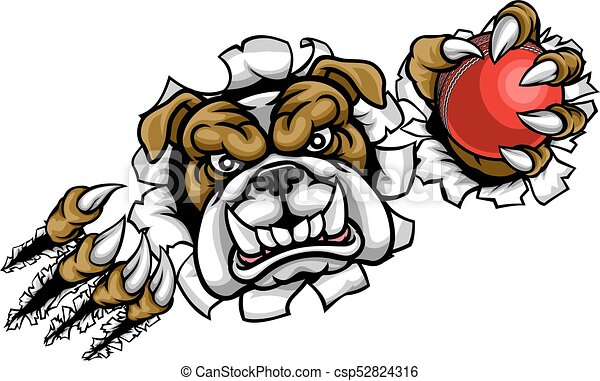 bulldog cricket sports mascot a bulldog angry animal sports rh canstockphoto ca friendly bulldog mascot clipart cute bulldog mascot clipart