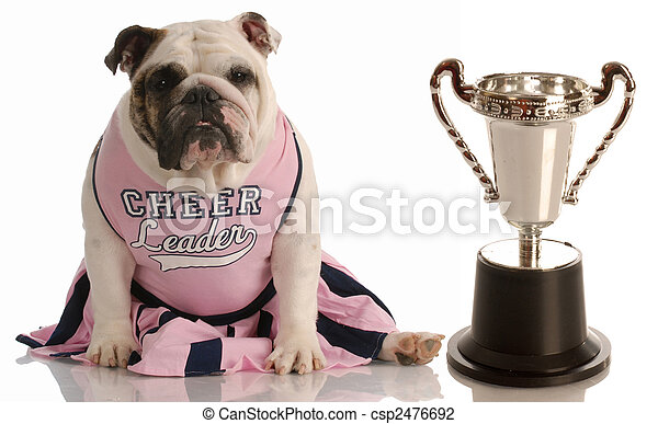 bulldog dressed as cheerleader sitting beside large trophy - csp2476692