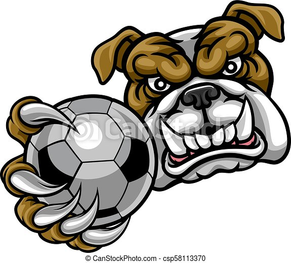 Bulldog Holding Soccer Ball Football Mascot - csp58113370