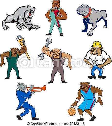 bulldog-mascot-CARTOON-SET - csp72433116
