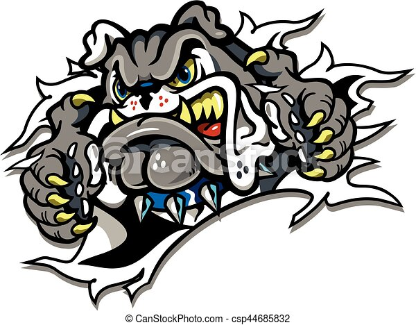 bulldog mascot ripping through the background for school college or rh canstockphoto com