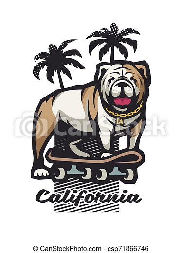 Bulldog on a skateboard on the background of silhouettes of palm trees. Vector illustration. - csp71866746