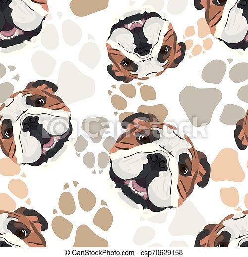 Patas de perro bulldog inglés - csp70629158
