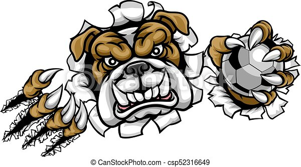 Bulldog Soccer Football Mascot - csp52316649