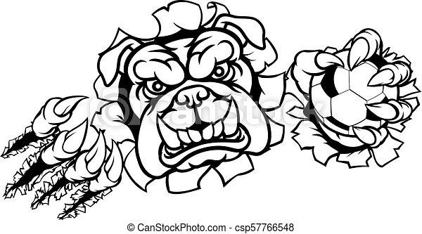 Bulldog Soccer Football Mascot - csp57766548