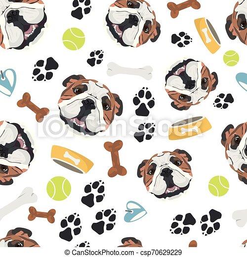 Perro sonriente bulldog inglés - csp70629229