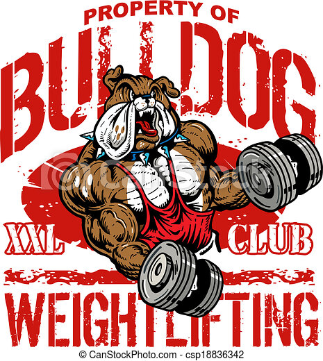 Bulldog Working Out With Free Weights Dumbbells At The Gym Photo Art Print Poste
