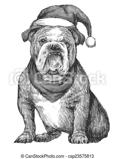 b3fa216402f Hand drawn vector of bulldog with christmas hat on white background.