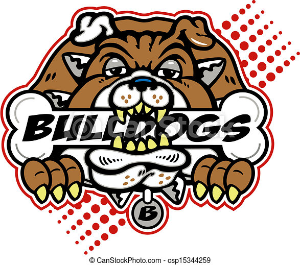 bulldog with huge bone - csp15344259