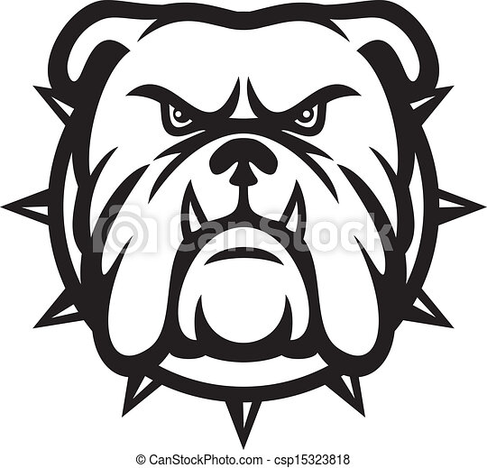 Bulldog-Kopf - csp15323818