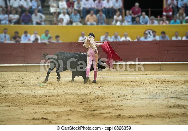 Bullfighting. - csp10826359