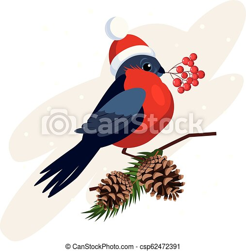 Bullfinch wearing a Hat holding berries on Branch with Cones. Vector - csp62472391