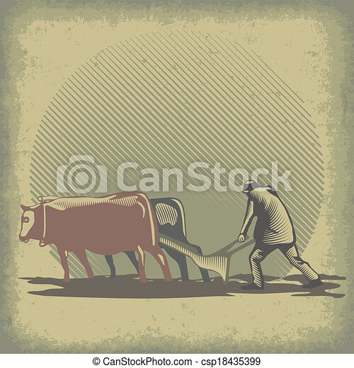 Bulls and harrow - csp18435399