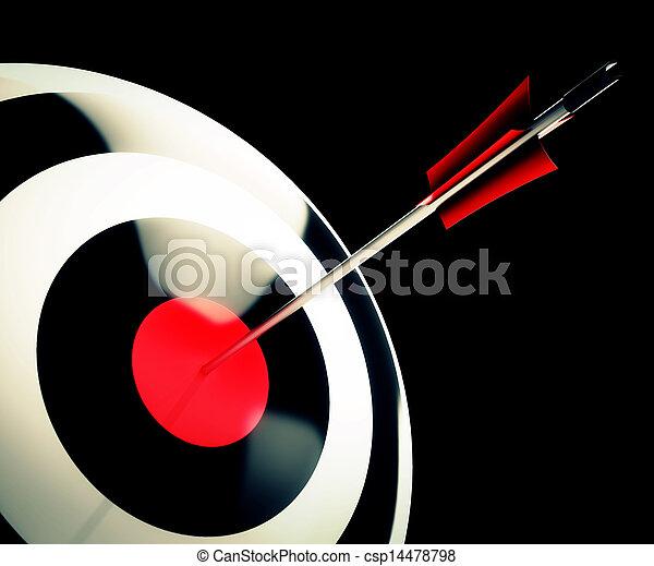 Bulls eye Target Shows Successful Winning Perfect Aim - csp14478798