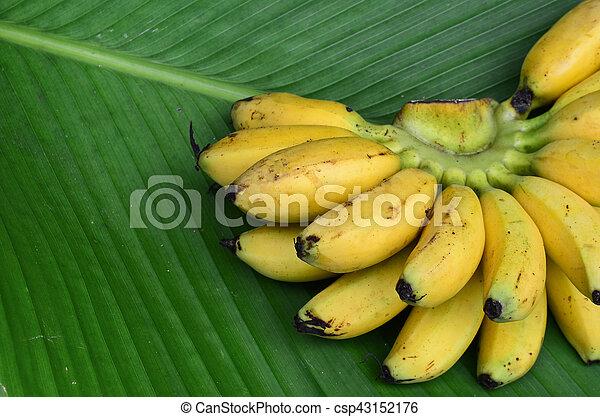 Bunch of banana - csp43152176
