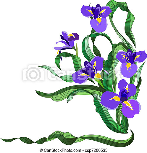 bunch of blue irises isolated on white background clipart vector rh canstockphoto com irish clip art images irish clip art free