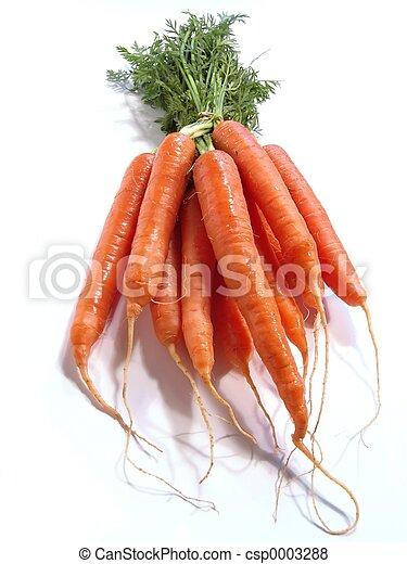 Bunch of Carrots - csp0003288