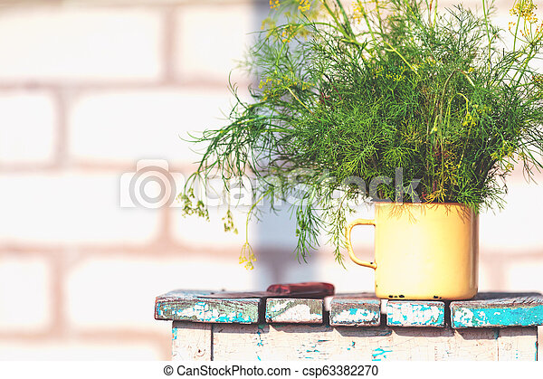 Bunch of dill in old yellow cup on vintage wooden table - csp63382270